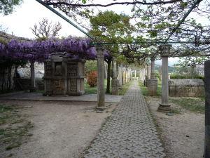 Cesta k ruinám Salony