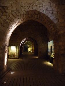 V chodbách citadely