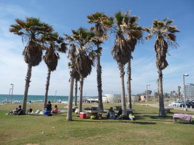 V Tel Avive sa nachádza veľa parkov, tento priamo pri pláži