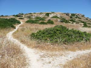 Cesta na akropolis mesta Amathus