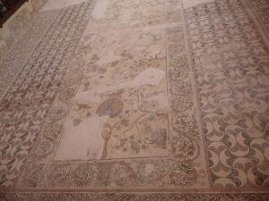 Dom Dionýza - Rastlinné a zvieracie motívy