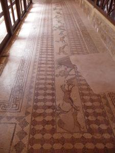 Dom Dionýza - Zvieracie motívy