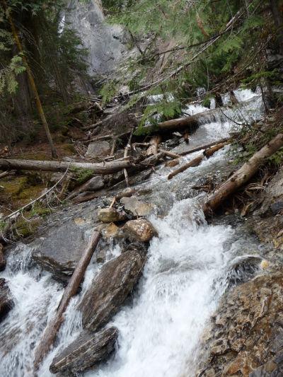 Bystrý tok pod Hamiltonovým vodopádom v národnom parku Yoho