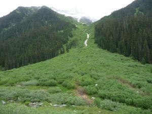 Po vynorení sa z lesa sa pomaly začína otvárať Medvedí priesmyk