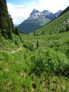 Vďaka slnečnému jasu je na Medvedí priesmyk (Balu Pass) excelentný výhľad