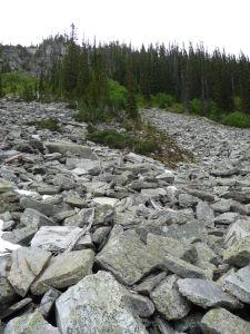 Cestička vedie i cez prírodné skalné násypy