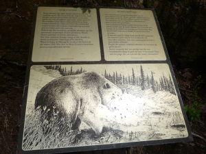 Túto tabuľu upozorňujúcu na medvede si treba prečítať na začiatku a nie na konci!
