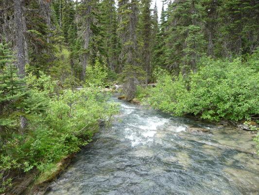 Riečka Joffre Creek v Provinčnom parku Joffreho jazerá v Britskej Kolumbii