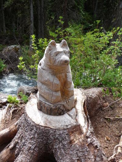Sošky medveďov lemujú celý výstup k Hornému Joffreho jazeru, skutočné medvede sa tu veľmi nevyskytujú, vzhľadom k vysokému počtu turistov - Provinčný park Joffreho jazerá v Britskej Kolumbii