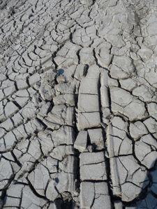 Zaschnuté bahno v Gobustanskom národnom parku