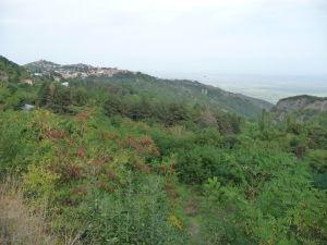 Kacheti - Výhľad na Signagi