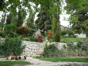 Kláštor Bodbe - Obydlie mníšok a zdochnutý pes