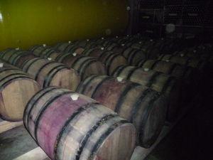 Vináreň Kindžamarauli - Úložisko vína