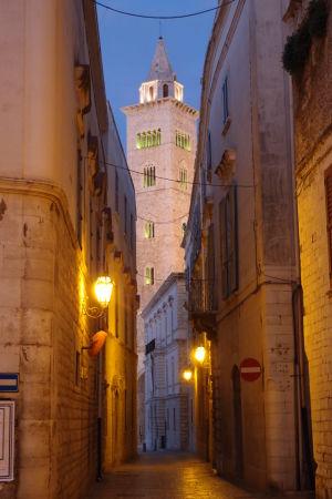 Veža katedrála večer