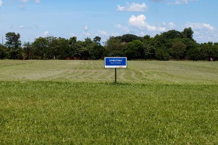Keby tu ten nápis nebol, tak asi ani nevieme, že tu bol dáky cintorín
