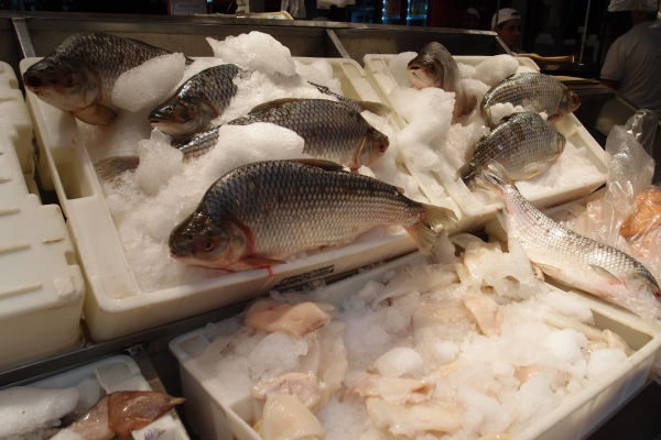 Mestská tržnica Mercado Norte v Córdobe - Kúpite tu i čerstvé ryby