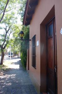 Ulice Colonie lemované stromami