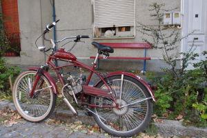 Zátišie s bicyklom a mačkami