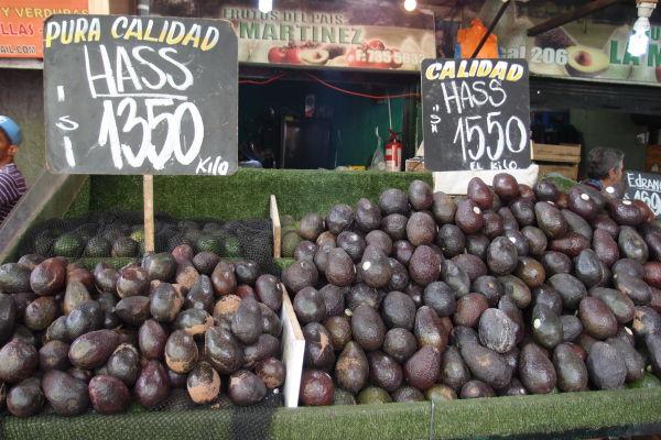 Avokádo v La Vega - najväčšej mestskej tržnici v Santiagu de Chile