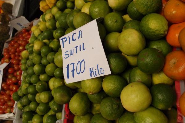 La Vega - najväčšia mestská tržnica v Santiagu de Chile - tu majú naozaj všetko