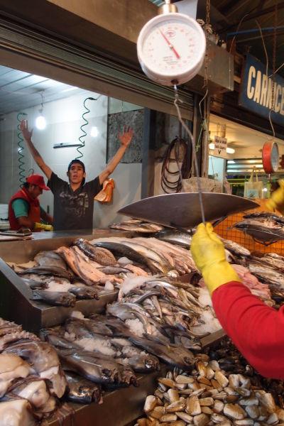 La Vega - najväčšia mestská tržnica v Santiagu de Chile - výber je obrovský, nakúpite tu napr. ryby a morské plody