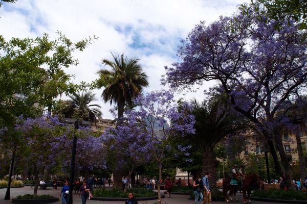 Námestie Plaza de Armas v Santiagu de Chile