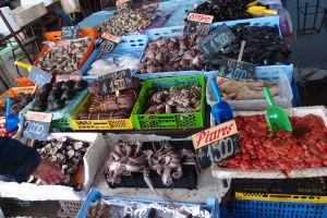 Morských živočíchov je tu nepreberné množstvo