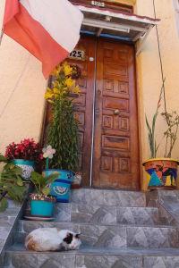 Zátišie v Playa Ancha