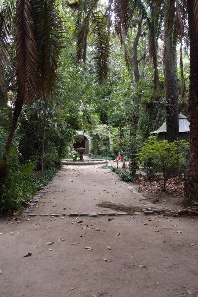 Nádvorie (ambit) Chrámu sv. Františka v Santiagu je domovom Koloniálneho múzea a zeleného parku