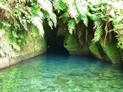 Jazierko Titou Gorge v národnom parku Morne Trois Pitons na Dominike. Zdroj: Travelintense.com