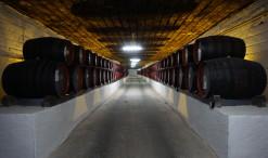 Vínne pivnice v Cricove