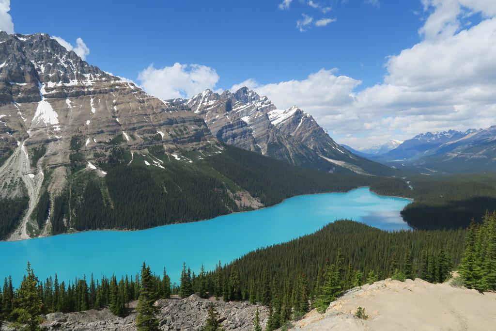 Jazero Peyto v národnom parku Banff