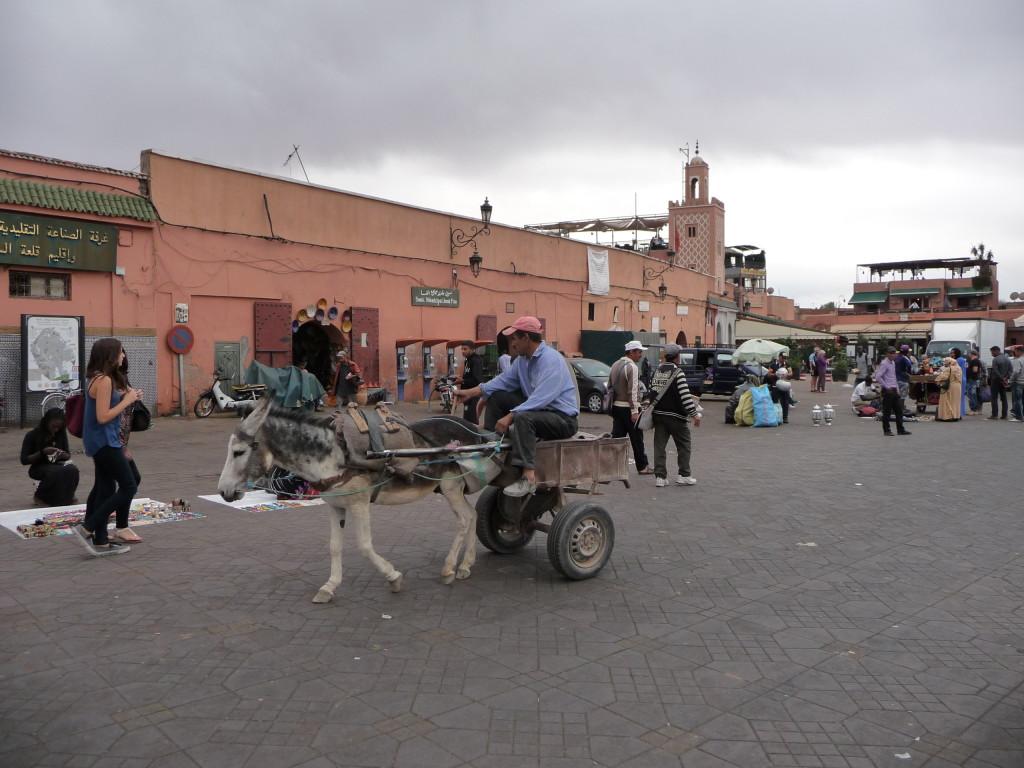 Ruch na tržnici v Marakéši